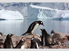 Die Antarktis Umweltbundesamt