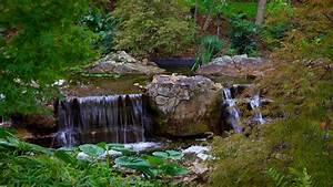 Dallas arboretum and botanical garden in dallas texas for Dallas arboretum and botanical garden dallas tx