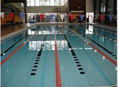 Pools Wigan Swimming Club Wasps