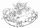 Bed Flower Coloring Pages Flowerbed sketch template