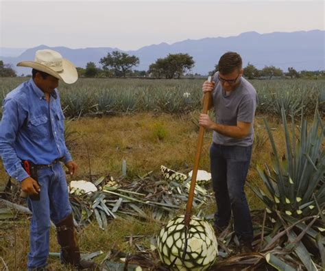 how to make tequila drinks the awesomer