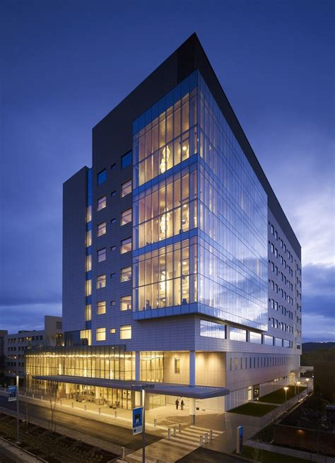randall childrens hospital zgf architects archdaily
