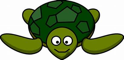 Turtle Sea Clip Clipart Cartoon Svg Tortoise
