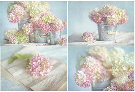 Frequent special offers and discounts up to 70% off for all products! Amazon.com: Lovely Hydrangea 4 Print Set, Rustic Wall Art ...