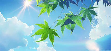 Pin by Yozora on gif | Garden of words, Anime scenery ...