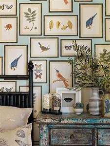 The 25+ best Bird wallpaper ideas on Pinterest