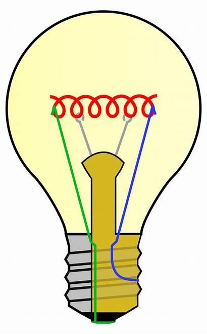 Bulb Labels Incandescent Svg Parts Clipart Lightbulb