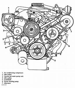 1988 Land Rover Range Rover Serpentine Belt Routing And