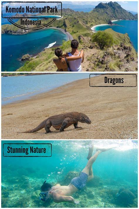 plan  trip  komodo island dragons diving