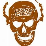 Skull Brown Icons Icon Custom