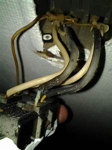 Does This Look Like Copper Wire