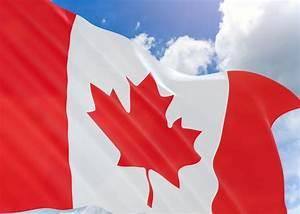 Health Canada Awards Dry Cannabis Sales License to WeedMD - WeedMD.com