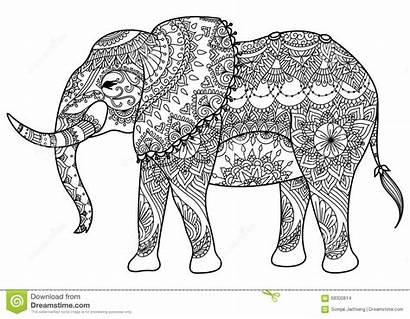 Mandala Elephant Coloring Line Vector Mandada Element