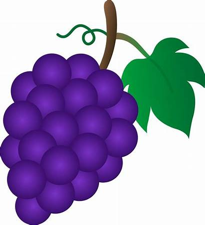 Clipart Grapes Violet Bunch Grape Clip Clipground