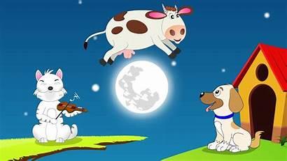 Diddle Nursery Rhyme Hey Quiz Seniors Cow