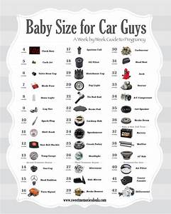 Car Guy U2019s Guide To Baby Size During Pregnancy  U2013 Submit