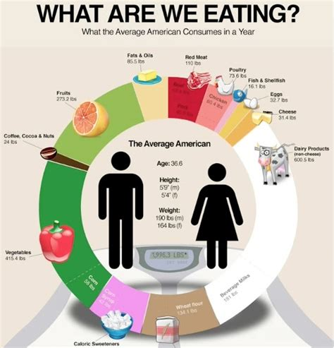 infographics design examples images graphic design