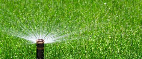 gazon pelouse et arrosage automatique devis pour mon jardin