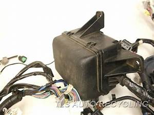 2014 Toyota Tundra Engine Wire Harness