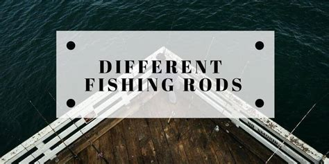 types  fishing rods reels explained