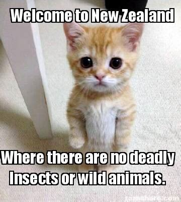 Animal Meme Generator - meme creator welcome to new zealand where there are no deadly insects or wild animals meme