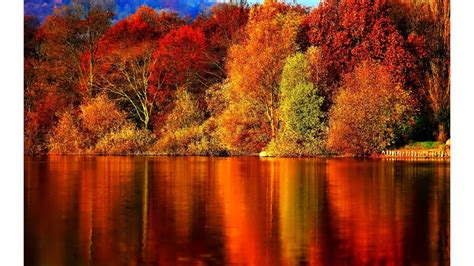 fall pics wallpapers  background pictures