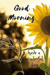 35 Good Morning... Cebuano Good Morning Quotes