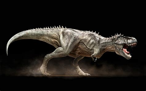 Dinosaur Facts And Trivia Part 1