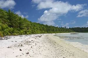 Survival Scenarios: Desert Island Dilemma | RECOIL OFFGRID
