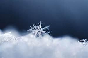 snow snowflake close up crystal pattern HD wallpaper