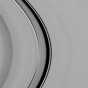 The Synchronicity of Rhythms   NASA