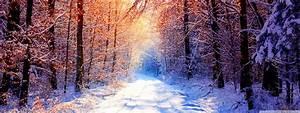 Winter Widescreen Wallpaper Wide | Nature HD Wallpaper
