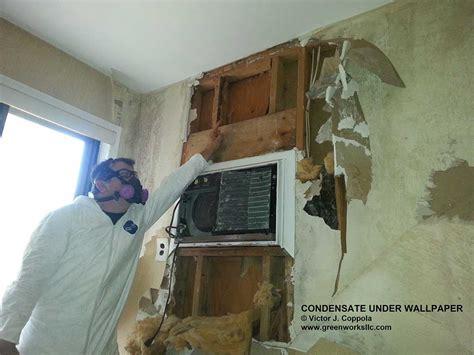 moisture underwallpaper vjc gwe