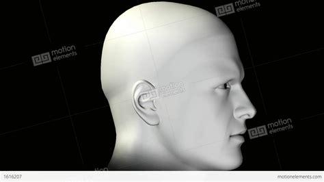 Man Rotating Human Head Stock Animation