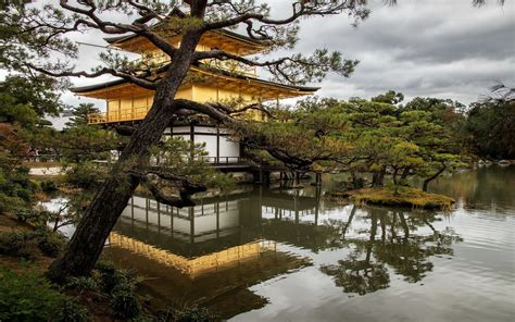 wallpaper japan temple landscape garden nature