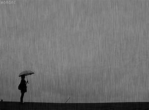 Rainy Gifs
