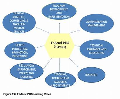 Nurse Roles Nursing Federal Dcp Professional