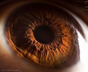 The human eye as you've never seen it. This will blow your ...