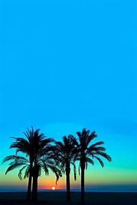 Tropical paradise...   Beach & Coastal Living   Pinterest ...