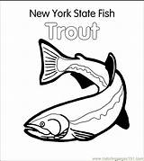 Coloring Trout Fish Pages State York Printable Stencil Colouring Fishing Brook Jumping Ny Brown Rainbow Drawing Template Drawings Clip Vector sketch template