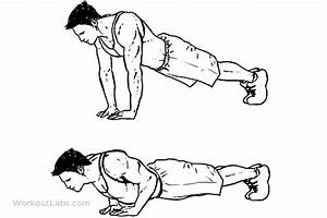 Home Workout For Beginners Bodybuilding