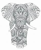 Mandala Coloring Elephant Adults Elephants Adult Animal Complex Drawing Printable Colouring Head Abstract Animals Sheets Colour Difficult Kleurplaten Detailed Aztec sketch template
