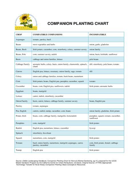 companion planting chart   templates   word