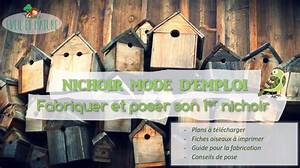 Plan Nichoir Oiseaux : nichoir mode d emploi fabriquer et poser son premier nichoir eveil et nature ~ Melissatoandfro.com Idées de Décoration