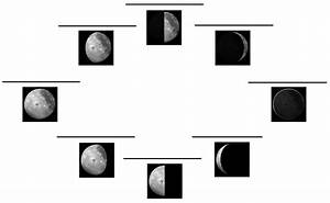 Moon Phases Diagram Blank