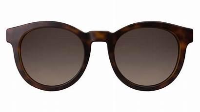 Sunglasses Gucci Ed Pngimg