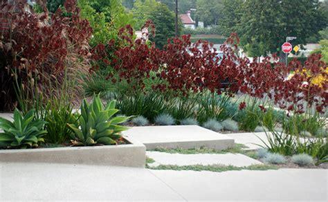 kangaroo paw garden design modern minimal on behance