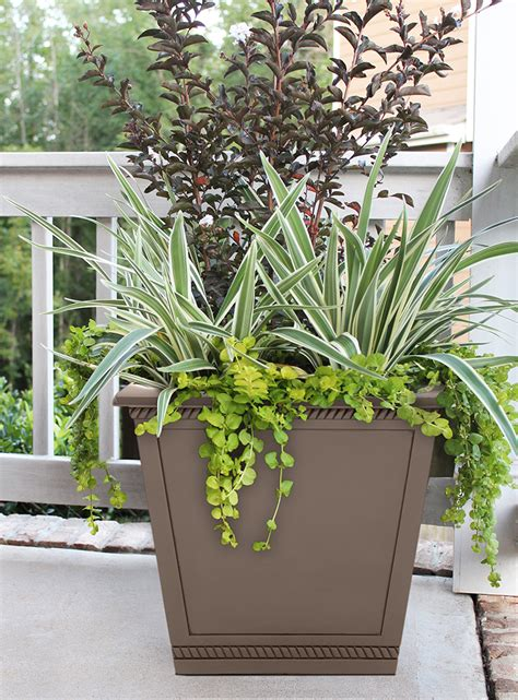 southern patio planters cmx 174 17 5 quot westhaven planter chili southern patio