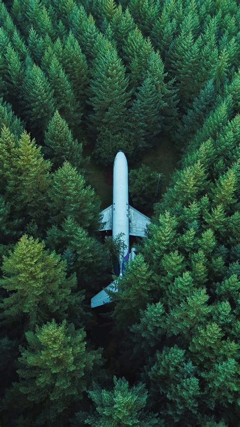 airplane trees top view wallpaper