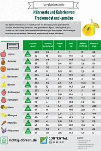 Kalorien Pro Tag Berechnen : kalorientabelle sind getrocknete fr chte gesund infografik ~ Themetempest.com Abrechnung